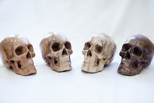 Skulls – An Introduction: What Do You See?