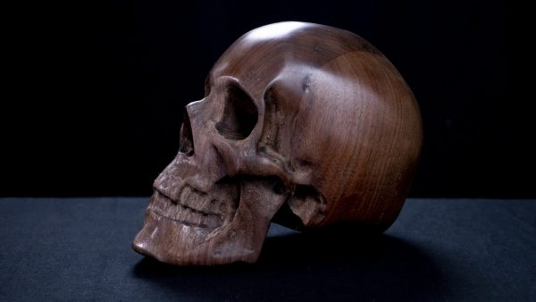 Custom Skull Series 001 (left side)